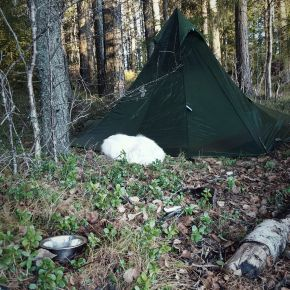 Review: Nigor WickiUp 3